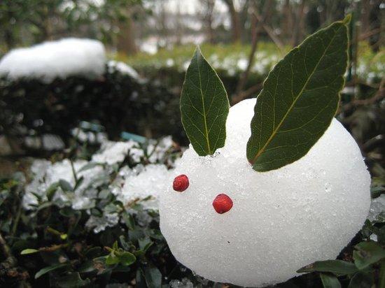 2010yukiusagi.jpg